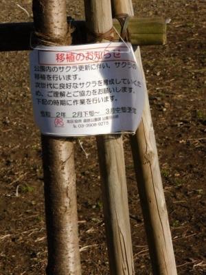 Asuka4